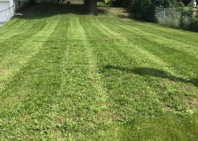 Grass Cutting Service Raytown MO