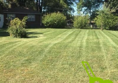 Lawn Care Service Lees Summit MO