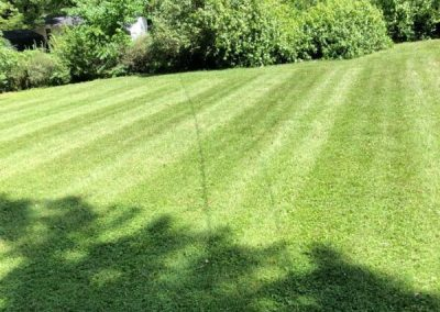 Lawn Mowing Service Independence MO