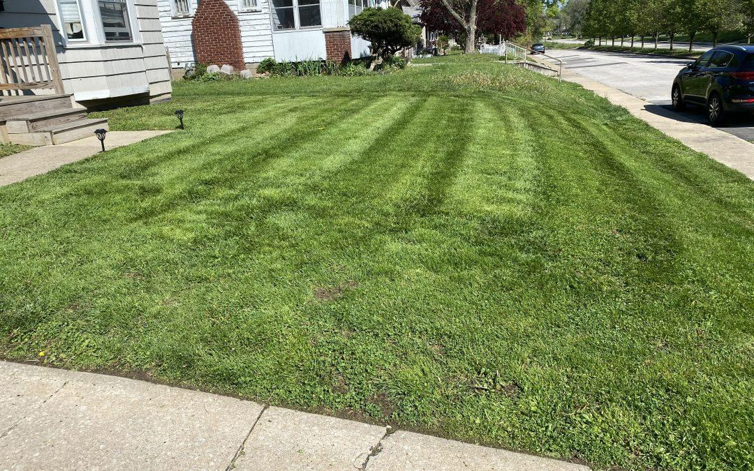 #1 Lawn Mowing Service | Who We Hire
