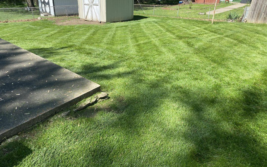 #1 Lawn Mowing Service | Our Story